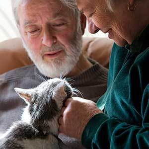 old couple with cat